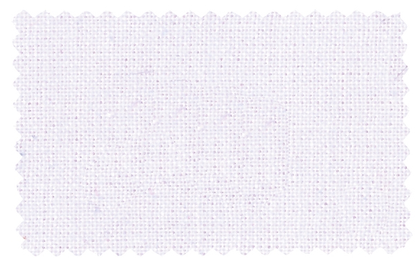 Fabric Color 301