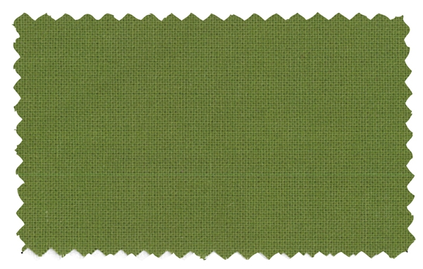 Fabric Color 343