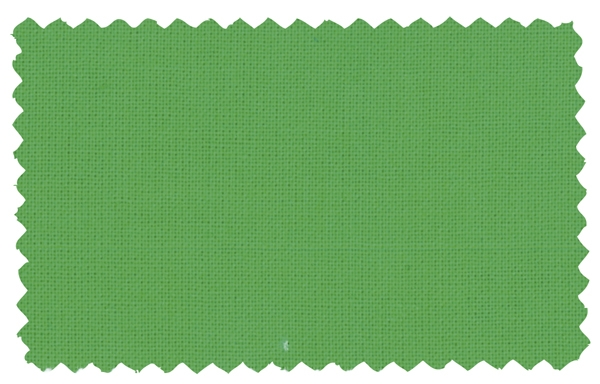 Fabric Color 331