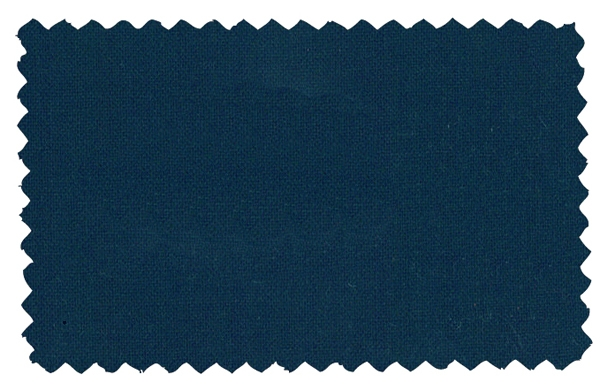 Fabric Color 099