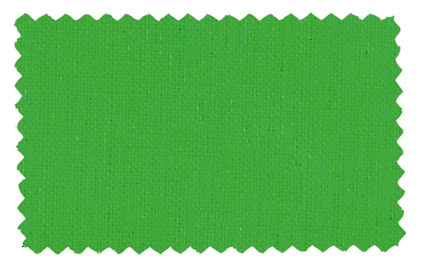 Fabric Color 113