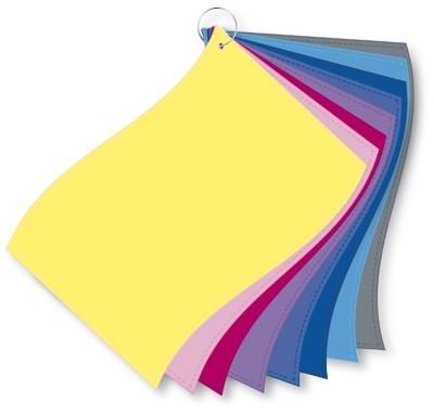 ColorFlag-Einzelbund / Farbqualität kühl (8)