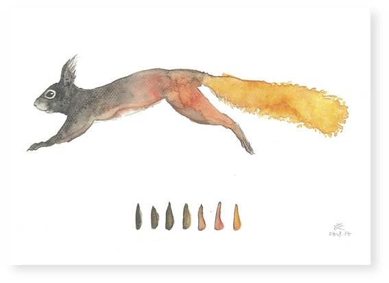 Postkarte Eichhörnchen / VE (10)