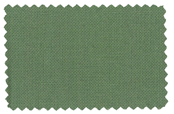 Fabric Color 342