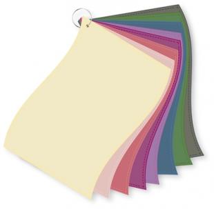 ColorFlag-Einzelbund Sommer-Herbst (8)