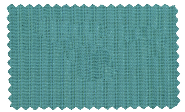 Fabric Color 205