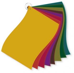 ColorFlag-Einzelbund Herbst (8)