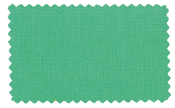 Fabric Color 298
