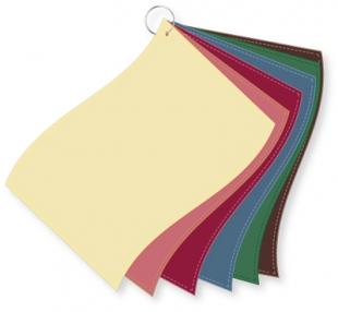 ColorFlag-Detailbund Herbst gedämpft (6)