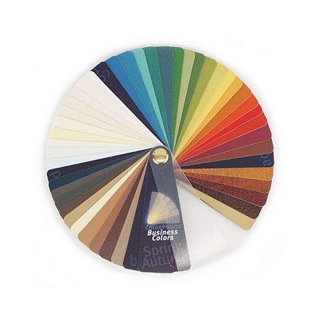 ColorPocket Business Spring-Autumn (Men)