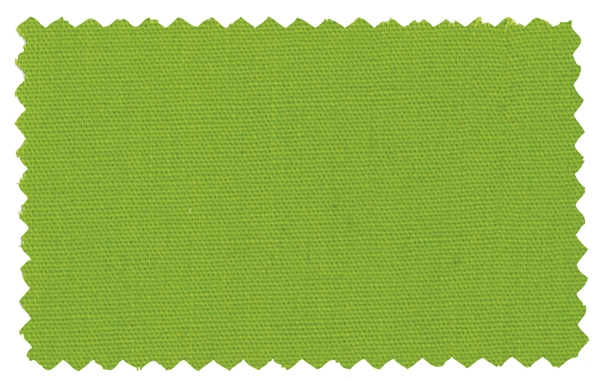 Fabric Color 306